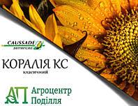 Семена подсолнечника КОРАЛИЯ 100-103 дн.