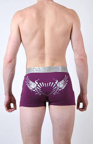 Мужские трусы - боксеры C+3 #663 XL фиолетовые, фото 2
