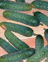 Семена огурца Меренга F1(250с) партенокарпик ранний, фото 1