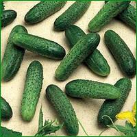 Семена огурца Мирабелл F1(1000c) партенокарпик ранний, фото 1