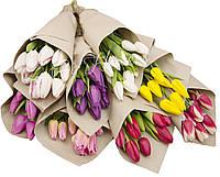 Букеты тюльпанов, фото 1