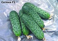 Семена огурца Сатина F1 (1000c) партенокарпик ранний, фото 1