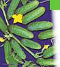 Семена огурца Гектор F1(1000с) пчелоопыляемый ультраранний
