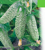 Семена огурца Караоке F1(1000c) партенокарпик ранний, фото 1