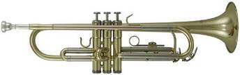 Труба В ROY BENSON TR-202, фото 2