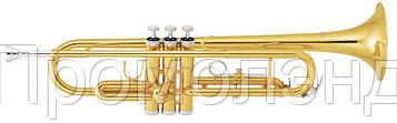 Труба CARVELLI CTP 115 + ЧЕХОЛ