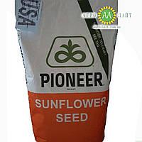 Семена подсолнечника Пионер П64ЛЕ25
