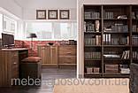 Стол письменный BIU 120Опен (Гербор /Gerbor) 1200х600х775мм , фото 2