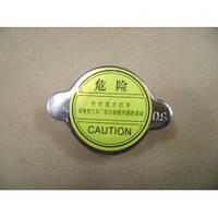 Крышка радиатора  0 9 BAR Great Wall Safe / Грейт Вол Сейф 1301111-D01
