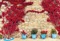 Фотообои готовые Wizard+Genius 368x254 см Каменная стена с цветами (3579.21004)