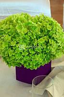 Оформление цветами, свадебные букеты, украшение стола цветами, флористика в европейском стиле