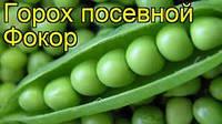 Семена горох ФОКОР 1кг