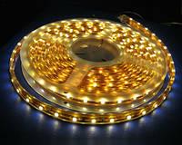 Влагостойкая светодиодная лента Bioledex с теплым светом 5 метров
