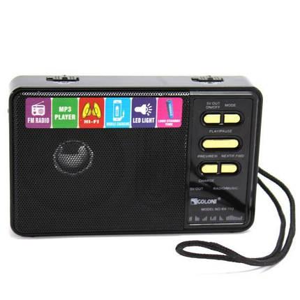 Радиоприемник Golon RX-113 радио с powerbank 4000 mAh фонариком usb и SD черный, фото 2