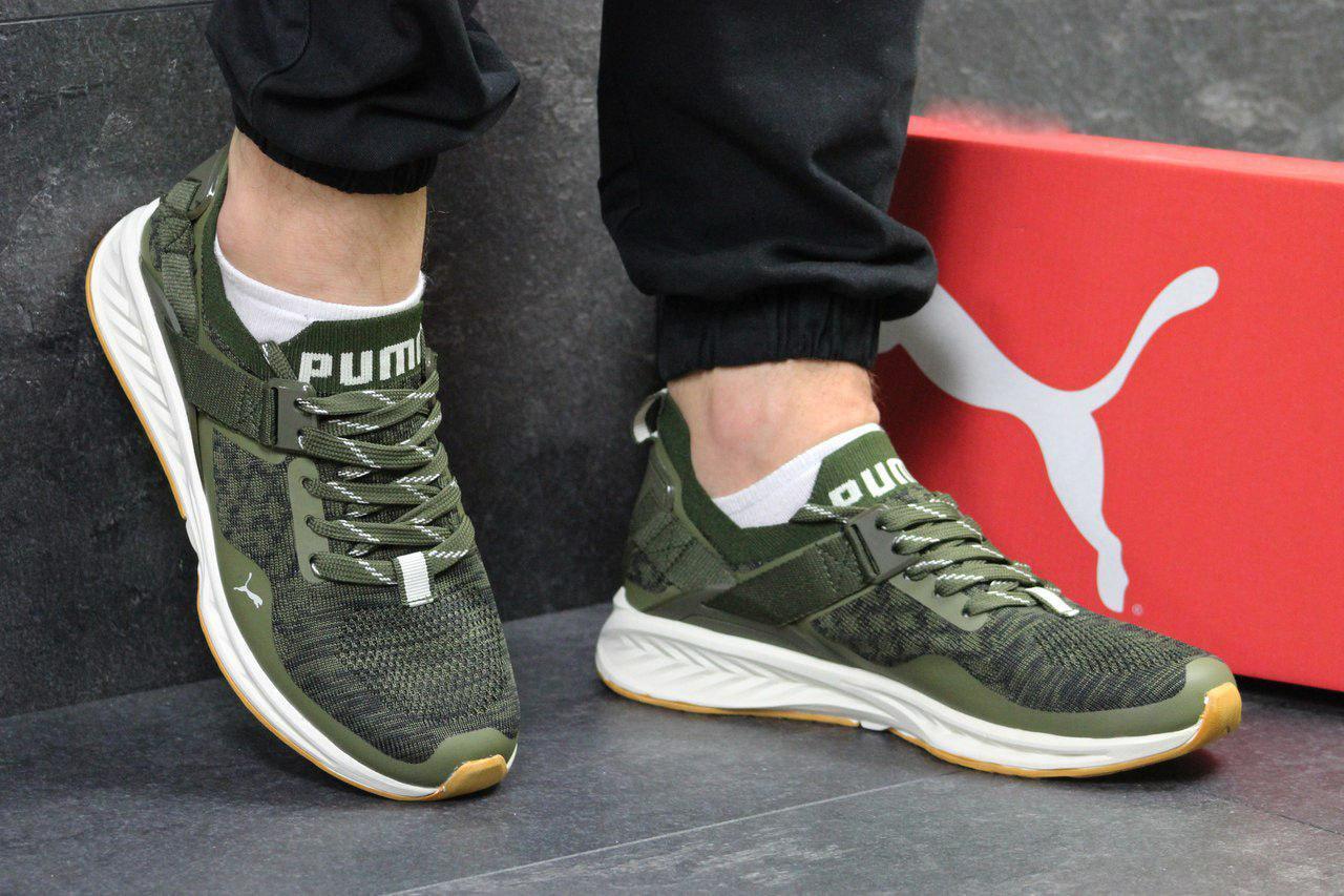 online store 9dad6 2e2e1 Мужские кроссовки Puma Ignite Evoknit Green: продажа, цена в Днепре.  кроссовки, кеды повседневные от