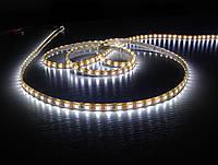 Влагостойкая светодиодная лента Bioledex с холодным светом 5 метров