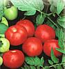Семена томата Топкапи F1(1000c) полудетерминантный ранний