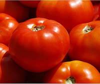 Семена томата Бобкат F1 (1000с) низкорослый красный средне-ранний