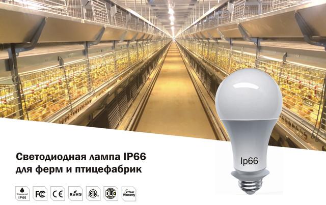 Светодиодные цокольные лампы для птицефабрик, птицеферм, птичников