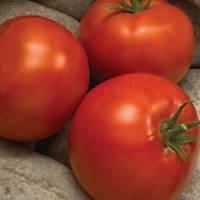 Семена томата Линда F1 (1000c) низкорослый ранний, фото 1
