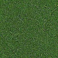 Линолеум IVC Сюрфейс Грасс 025 трава