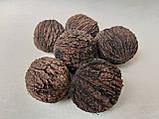 Орех маньчжурский черный, упаковка 6 шт, 20 грн, фото 2
