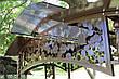 """Садовые качели """"Цветочные"""" (цвет шоколад), материал основы сидения - дуб (под заказ), фото 4"""