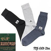 Чоловічі шкарпетки Житомир (Украина) TLK-001-2bn | 12 шт.