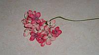 Ветка гортензии мелкой ярко-розовой