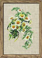 Набор для вышивки крестом Риолис 582 Ромашки