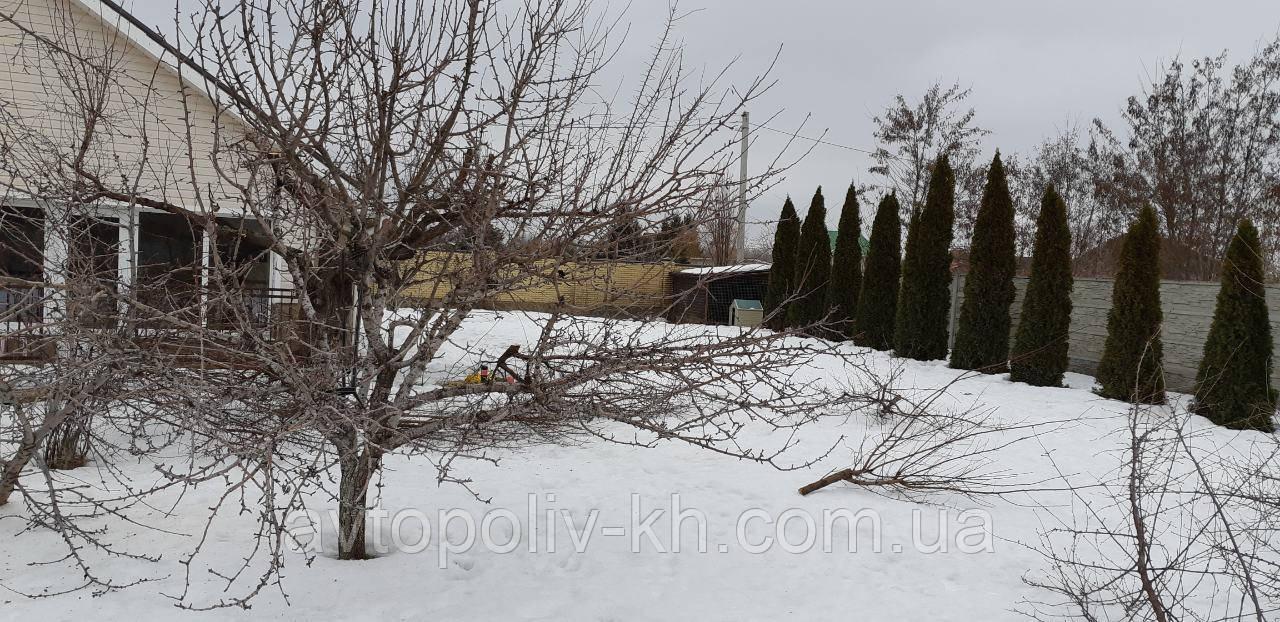 Архив: Опрыскивание, обработка весенняя обработка сада, обрезка ... | 622x1280