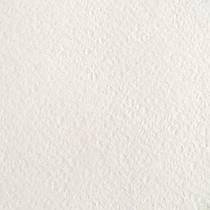 """Бумага рисовальная марки """"А"""" Гознак, плотность 200 г/м2"""