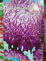 Астра пионовидная Седая Дама фиолетовая семена 10 грамм