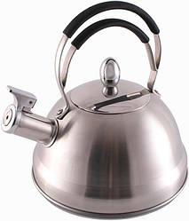 Чайник Fissman Bristol со свистком 2.3 л (FN-KT-5912_psg)