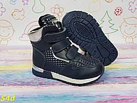 Детские демисезонные ботинки хайтопы спортивные синие