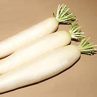 Семена редьки дайкон Титан Kitano, Семена овощей в профупаковке крупной фасовки 250 г для фермерских хозяйств