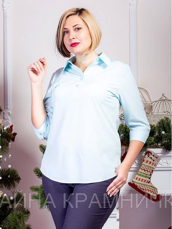 Блуза подовжена 3/4 рукав рр.48-52