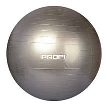 Фитбол 65 см + насос (Серый перламутр), фото 2