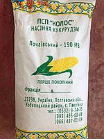 Семена кукурузы Почаївський 190 МВ (ФАО 190)