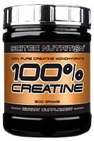100% Creatine Monohydrate (300 g)