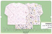 Детская рубашка на кнопках, кулир. РБ 97