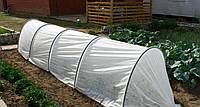 Теплица, парник Агрин Польша 8м, агроволокно 50 г/м2, мини теплицы парники, фото 1