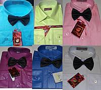 Детские белые и однотонные рубашки с бабочкой  BENDU от 2-3 до 7-8 лет , рост 92-128 см (оптом)