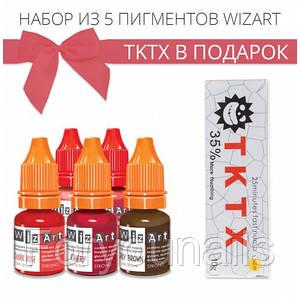 Набор пигментов WizArt + TKTX в подарок