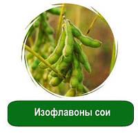Изофлавоны сои, 5 гр