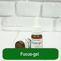 Fucus-gel, 10 мл, фото 1
