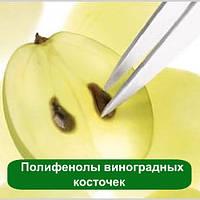 Полифенолы виноградных косточек, 25 мл
