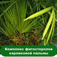 Комплекс фитостеролов карликовой пальмы, 10 мл