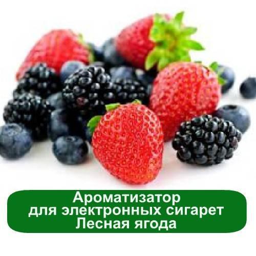 Ароматизатор для электронных сигарет Лесная ягода, 5 мл