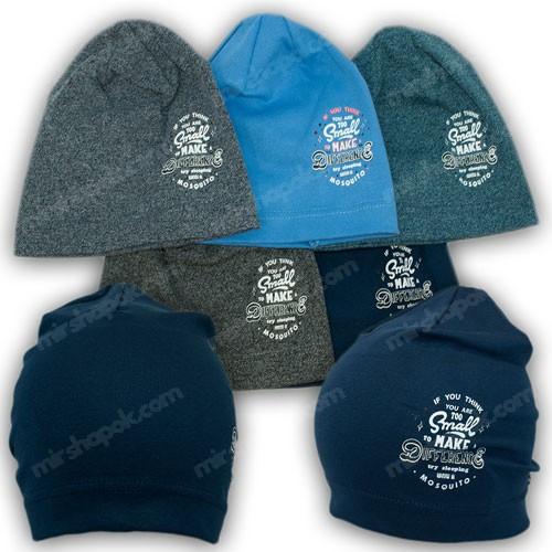 Трикотажные шапки для мальчика, р. 48-50